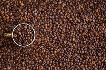 Bernicks_Coffee_May16.jpg